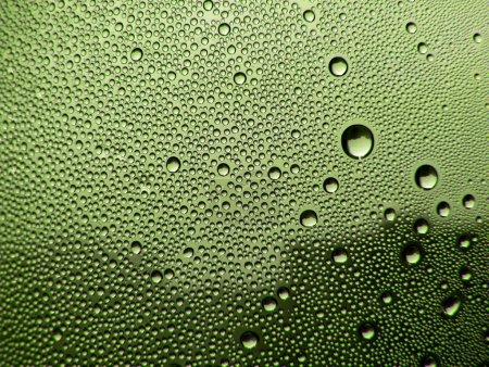Photo pour Gouttes de rosée sur le vitrail vert - image libre de droit