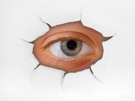 Photo pour Œil regardant à travers le trou sur la surface du papier - image libre de droit