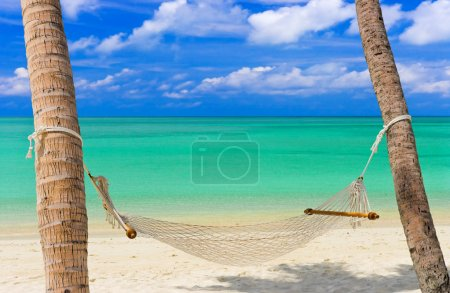 Photo for Hammock on a tropical beach - vacation background - Royalty Free Image