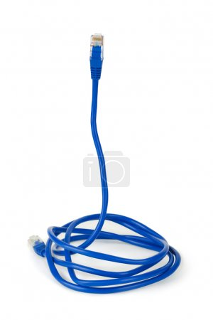 Computer cable like a snake - internet s