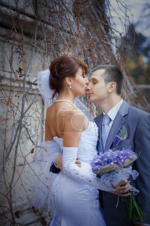 Photo for Bride kissing groom in their wedding day outdoors - Royalty Free Image