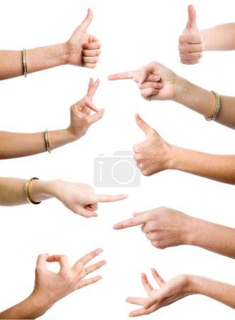 Photo pour Mains femelles démontrant différents gestes sur le fond blanc - image libre de droit