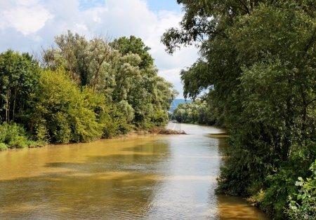 Danube channel between wooded banks
