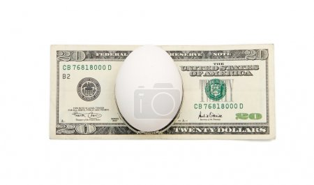White egg on twenty dollar bill isolated