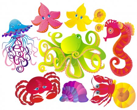 Many sea animals, vector illustration