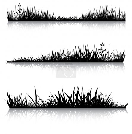 Illustration for Silhouettes of grass with the reflection. Illustration conducted was used as the dummies for your composition. - Royalty Free Image