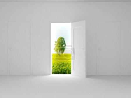 Landscape behind the open door