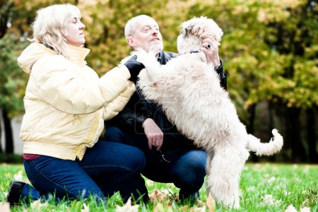 Family embrace irish soft coated wheaten