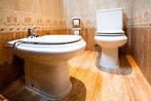 Toilet and bidet in the modern bathroom