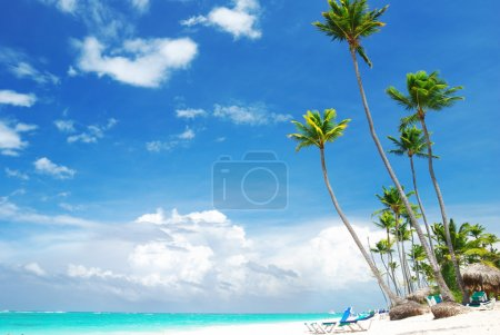 Foto de Hermosa playa del Caribe en República Dominicana - Imagen libre de derechos
