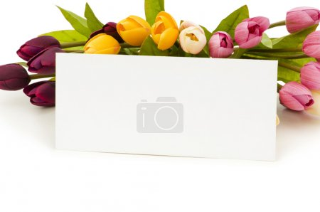 Tulips and blank message isolated