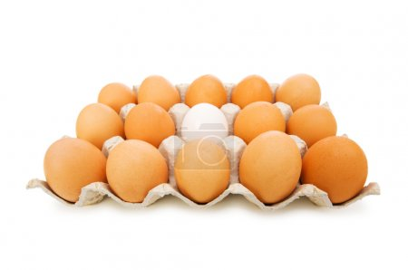Photo for Stand out of crowd concept with eggs on white - Royalty Free Image