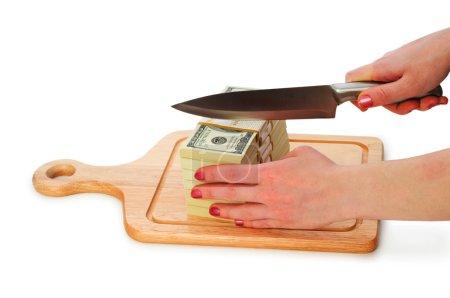 Money concept - cutting dollars