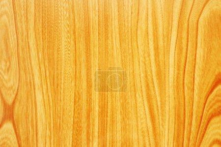 Photo pour Modèle du bois de surface - peut être utilisé comme backround - image libre de droit