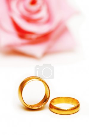 Two golden wedding rings and rose