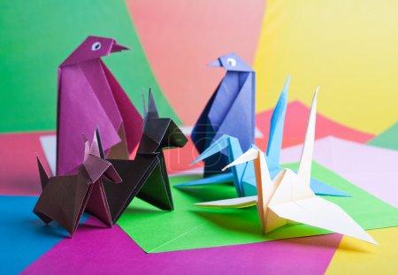 Foto de Origami. figuras de aves y animales contra el papel del color - Imagen libre de derechos