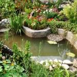 Green; pond; stream; water; stones;...