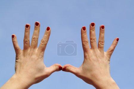 Photo pour Deux ; ouvert ; paume ; main ; doigts ; ongles ; ciel ; bleu - image libre de droit