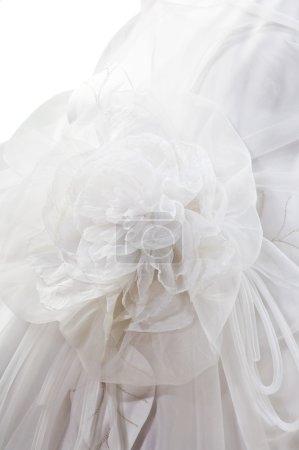 Photo for Silk fiber rose - Royalty Free Image