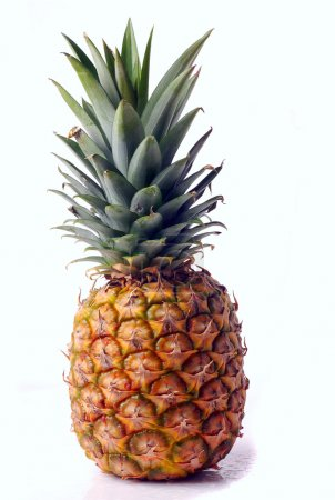 Photo for Pineapple - Royalty Free Image