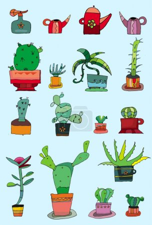 collection of small cactuses
