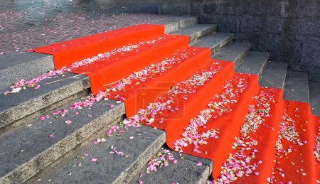 Photo for Stairs with rose petals on red carpet - Royalty Free Image