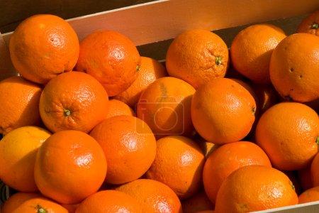 Photo pour Oranges fraîches mûres et savoureuses sur le marché - image libre de droit
