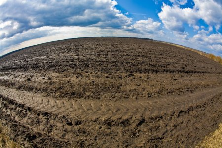 Plough land