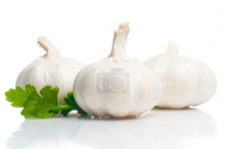 Photo for Fresh garlic isolated on white - Royalty Free Image
