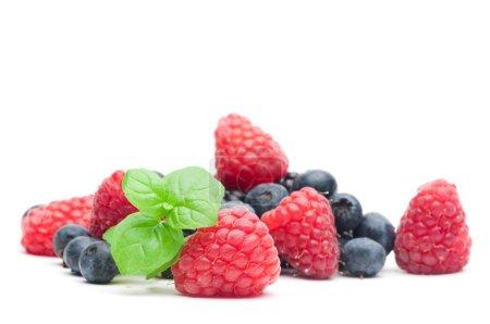 Wood berries