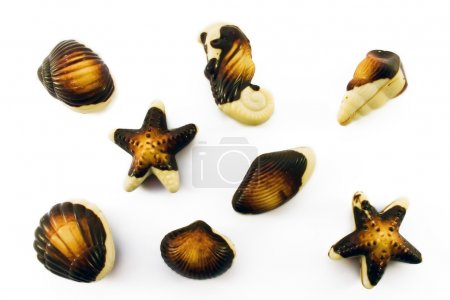 Milk chocolate seafood sweets on white