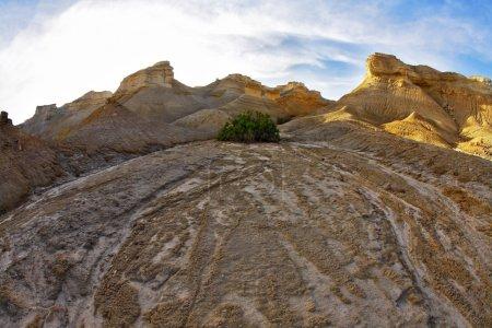 désert de pierres
