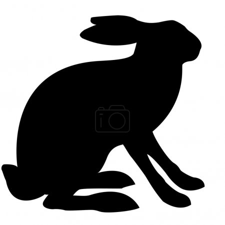 Photo for Illustration hare - Royalty Free Image