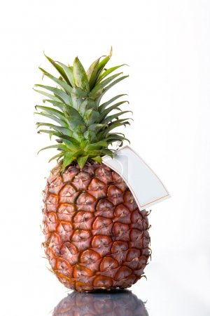 Pineapple with blank label on white back