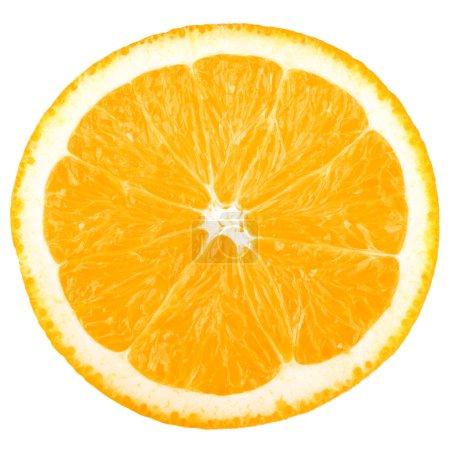 Photo pour Tranche de macro nourriture collection - orange. isolé sur fond blanc - image libre de droit