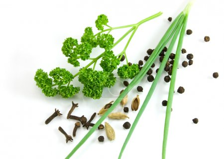 Greens and spices isolated on the white