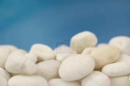 Photo pour Fond de galets de plage blancs de différentes formes et ciel bleu - image libre de droit