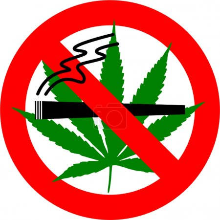 No cannabis sign isolated over white background...