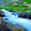 Mountain Stream in the North Caucasus. Clean, cold...