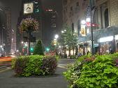 Manhattan Street View, 2003