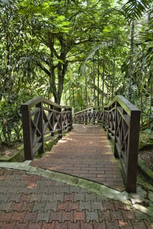 Foto de Parque de aves en kuala lumpur, capital de Malasia - Imagen libre de derechos