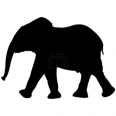 Illustration pour Bébé éléphant silhouette isolée sur fond blanc, illustration d'art abstrait - image libre de droit