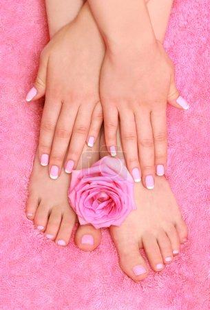 Photo pour Pied de thérapie de massage et à base de plantes sur fond rose - image libre de droit