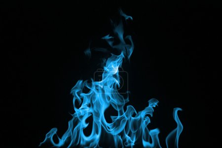 Photo for Blue Fire on a black background - Royalty Free Image