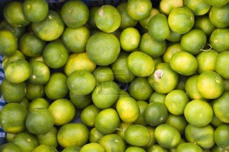 Photo for Heap of mandarines - Royalty Free Image