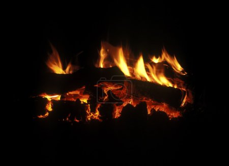 Burning down fire wood, fireplace, shine decayed c...