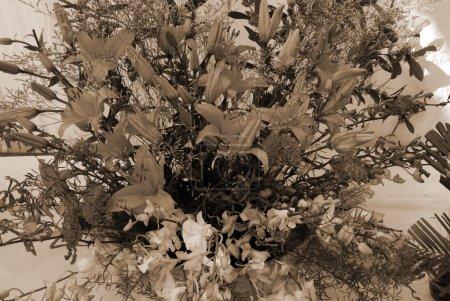 Flower Bouquet Ikebana sepia