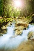 Beautiful waterfall in mountain wood, su