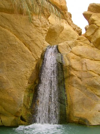 Oasis in desert and Waterfalls