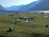 Kontaminace životního prostředí